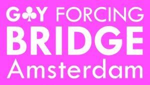 B.V. Gay Forcing logo